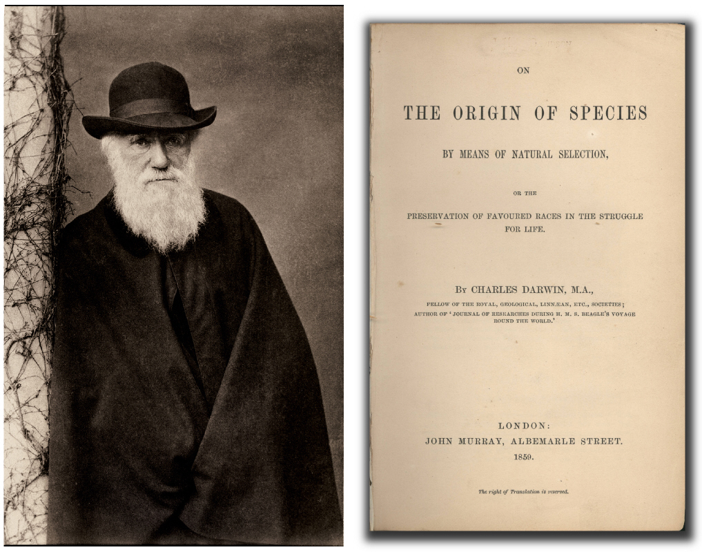 charles darwin on the origin of Despite ideas put forth by early philosophers, it was charles darwin who first posed an explanation for life's origin that complemented his evolutionary theory of life on earth in a letter written in 1871 to botanist joseph hooker, darwin envisioned.